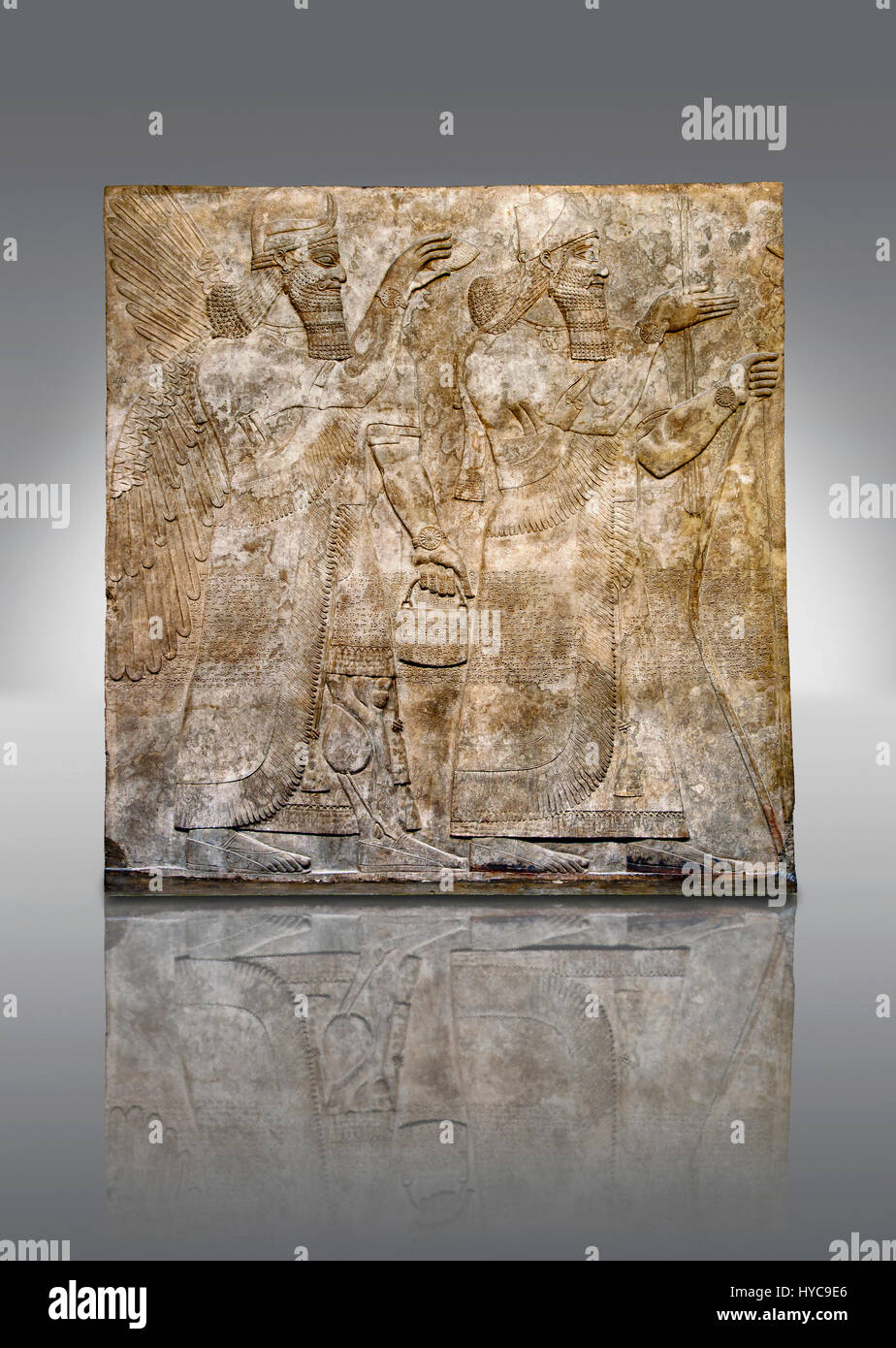 Assyrian relief sculpture panel  of King Ashurnaspiral II, right, and a winged protective spirit holding a bucket Stock Photo