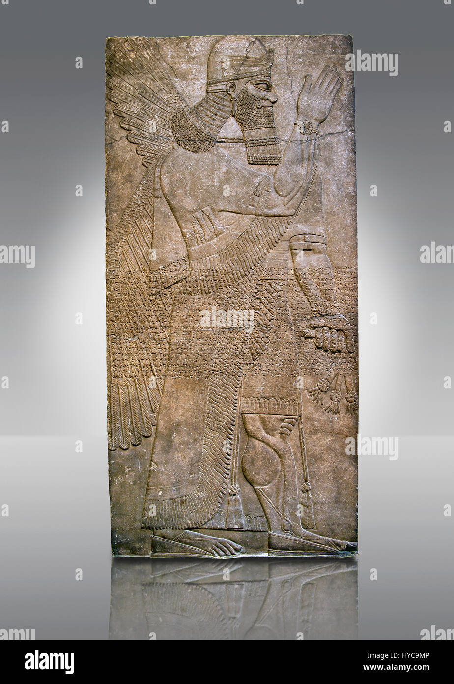 Assyrian relief sculpture panel  of a protective spirits holding a bucket of holy water wearing a rosette bracelet Stock Photo