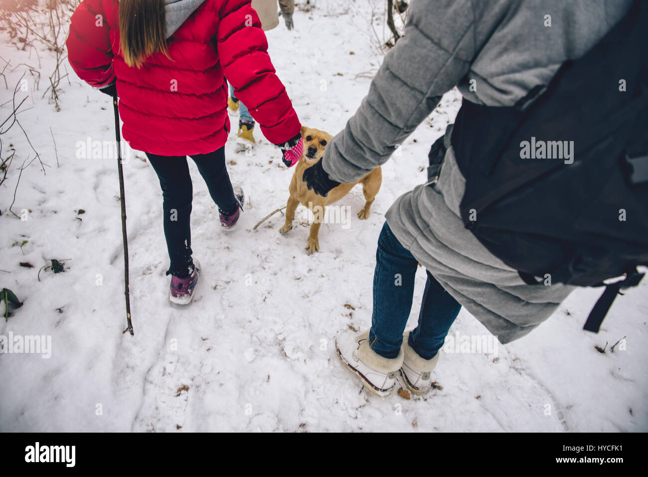 Mother and daughters hiking in the white winter forest with the dog - Stock Image