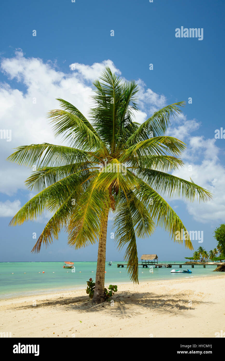 Pigeon Point Heritage Park on Tobago island, Trinidad & Tobago - Stock Image