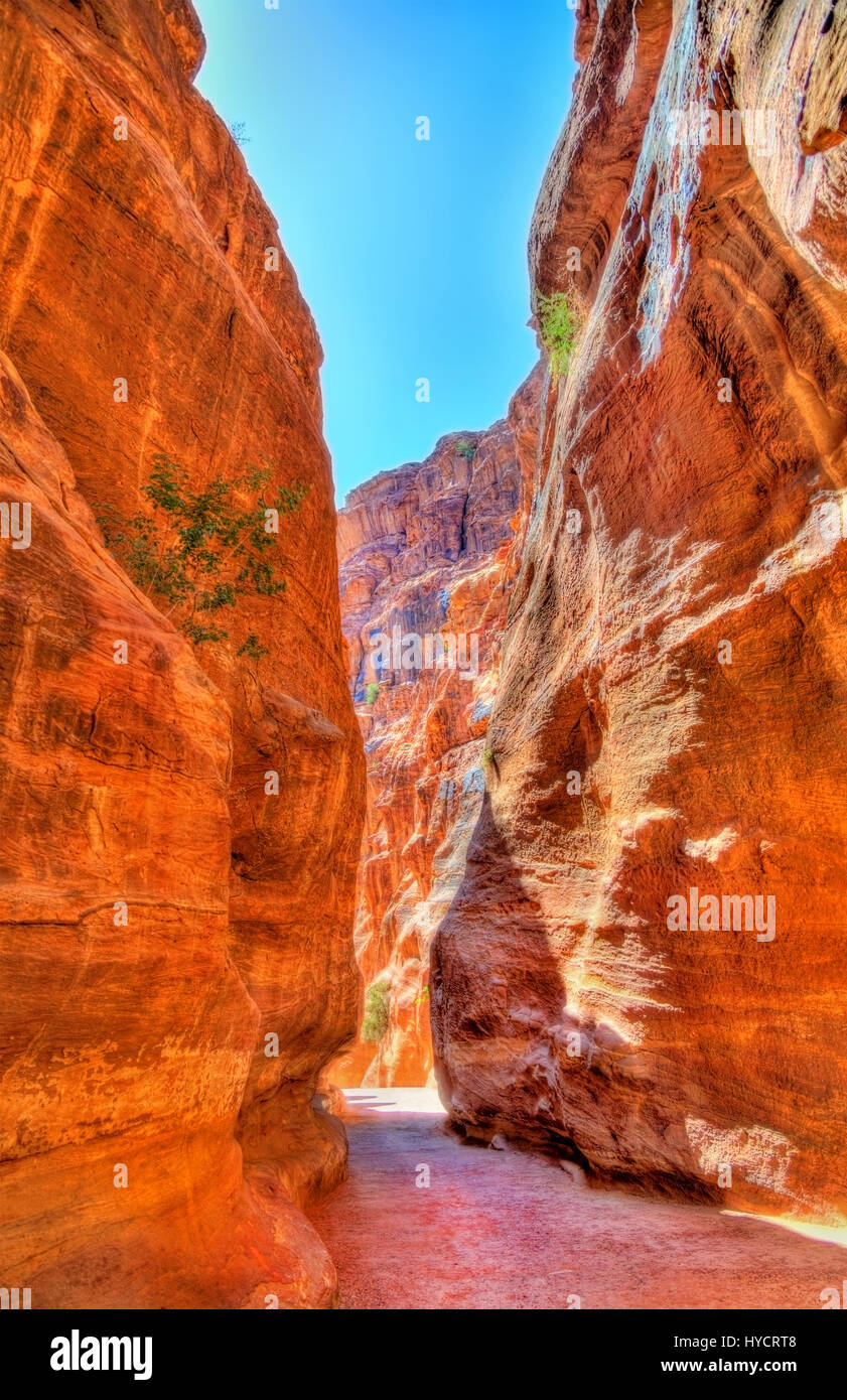 Road inside the Siq Canyon at Petra Stock Photo