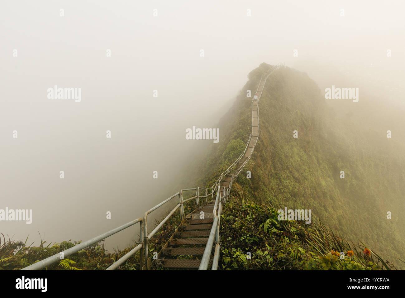 Haiku Stairs is a slippery and secretive hike on oahu Stock Photo