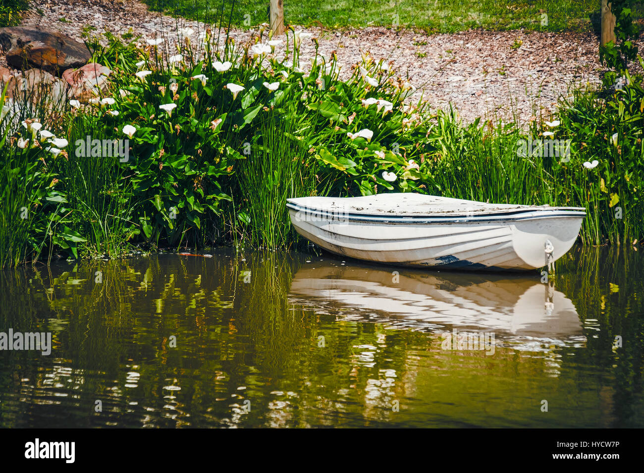 Old boat anchored in the pond - Stock Image