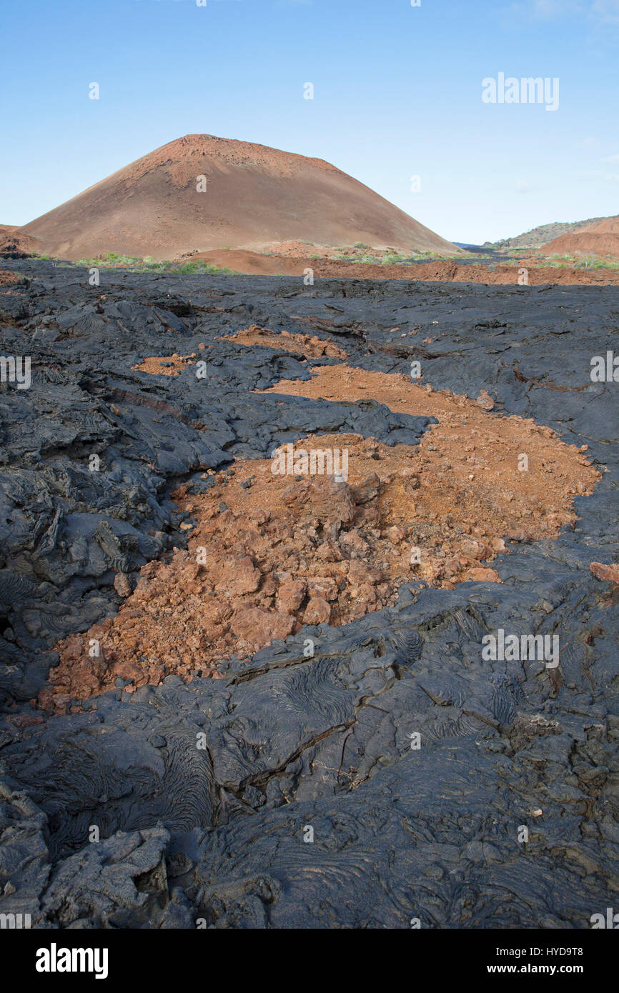 Hardened black pahoehoe lava flow over top of older oxidized and fragmented red aa lava flow, with volcano in background - Stock Image