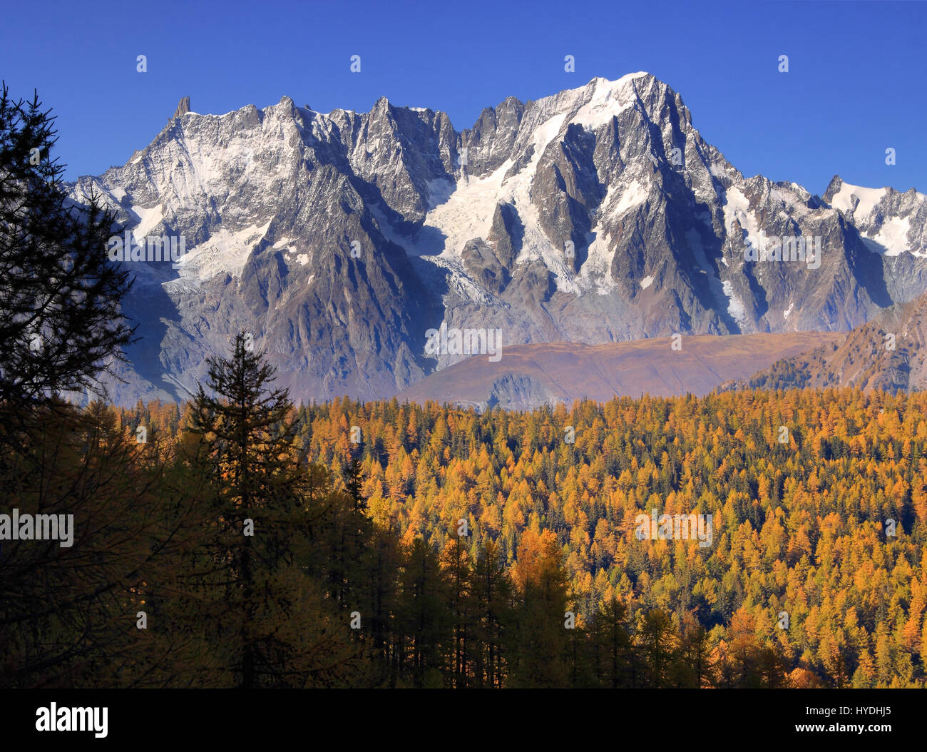 A view of the majestic northeastern portion of the Monte Bianco/Mont Blanc - from Dente del Gigante/Dent du Geant - Stock Image