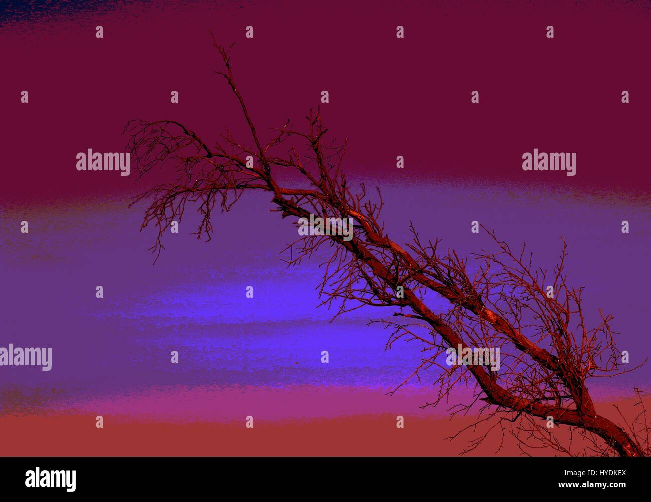 A dry branch against a futuristic and abstract skyline in landscape format - Stock Image