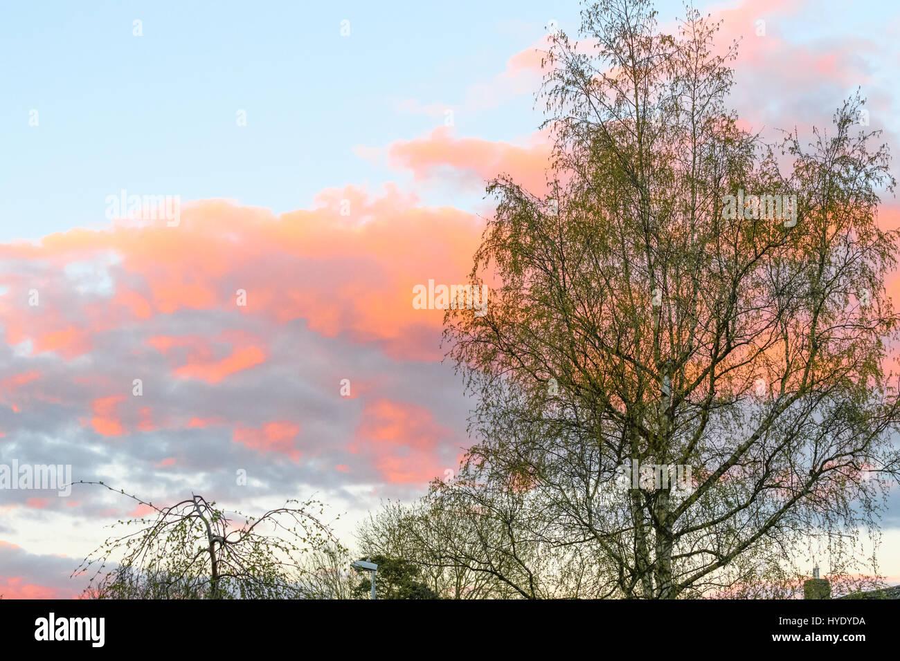 Red sky at night, shepherd's delight;  red sky in the morning, shepherd's warning. - Stock Image
