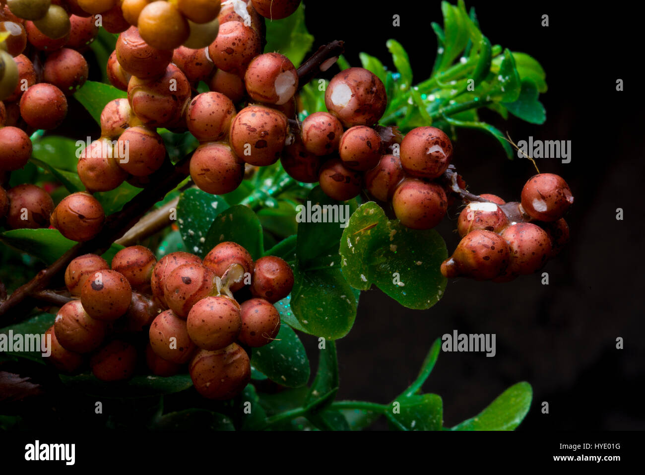 decorative floral picks berries - Stock Image