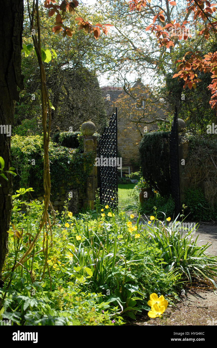Scene in an English country garden with Cotswold stone walls and mixed planting - Stock Image