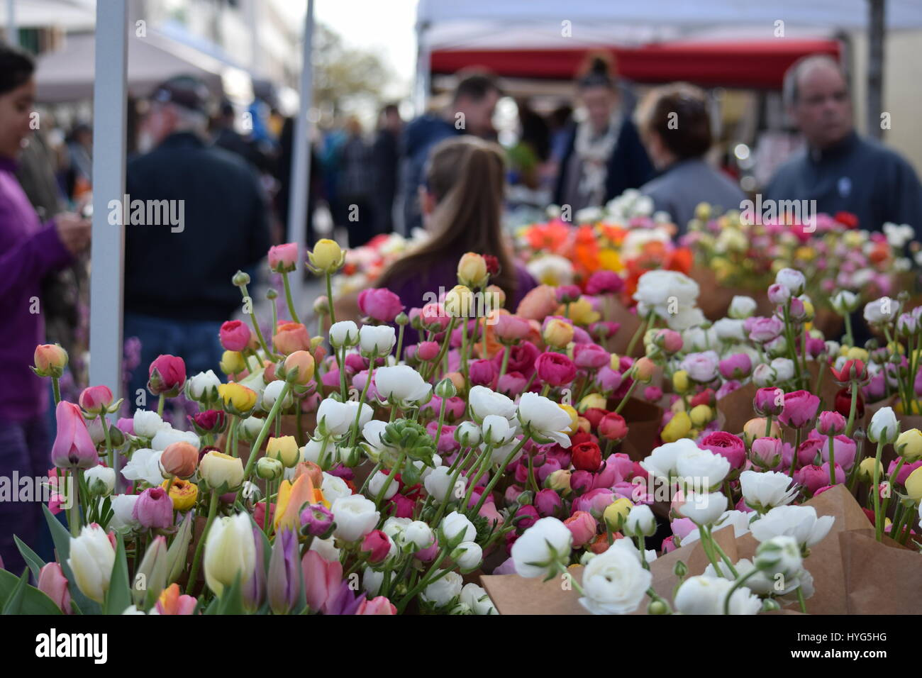 Farmer's Market Flowers - Stock Image