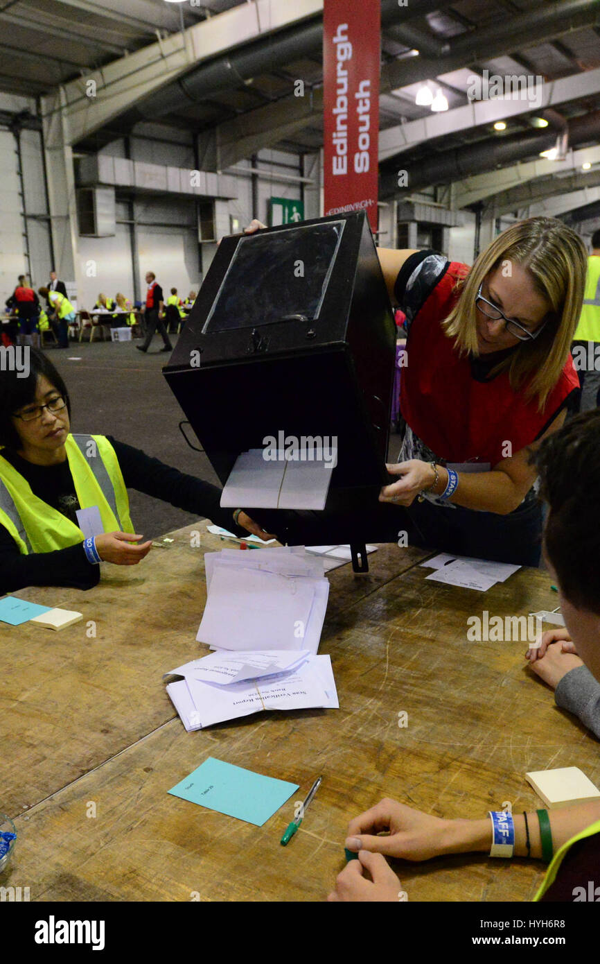 The first ballot boxes are opened at the Edinburgh count for the Scottish independence referendum - Stock Image