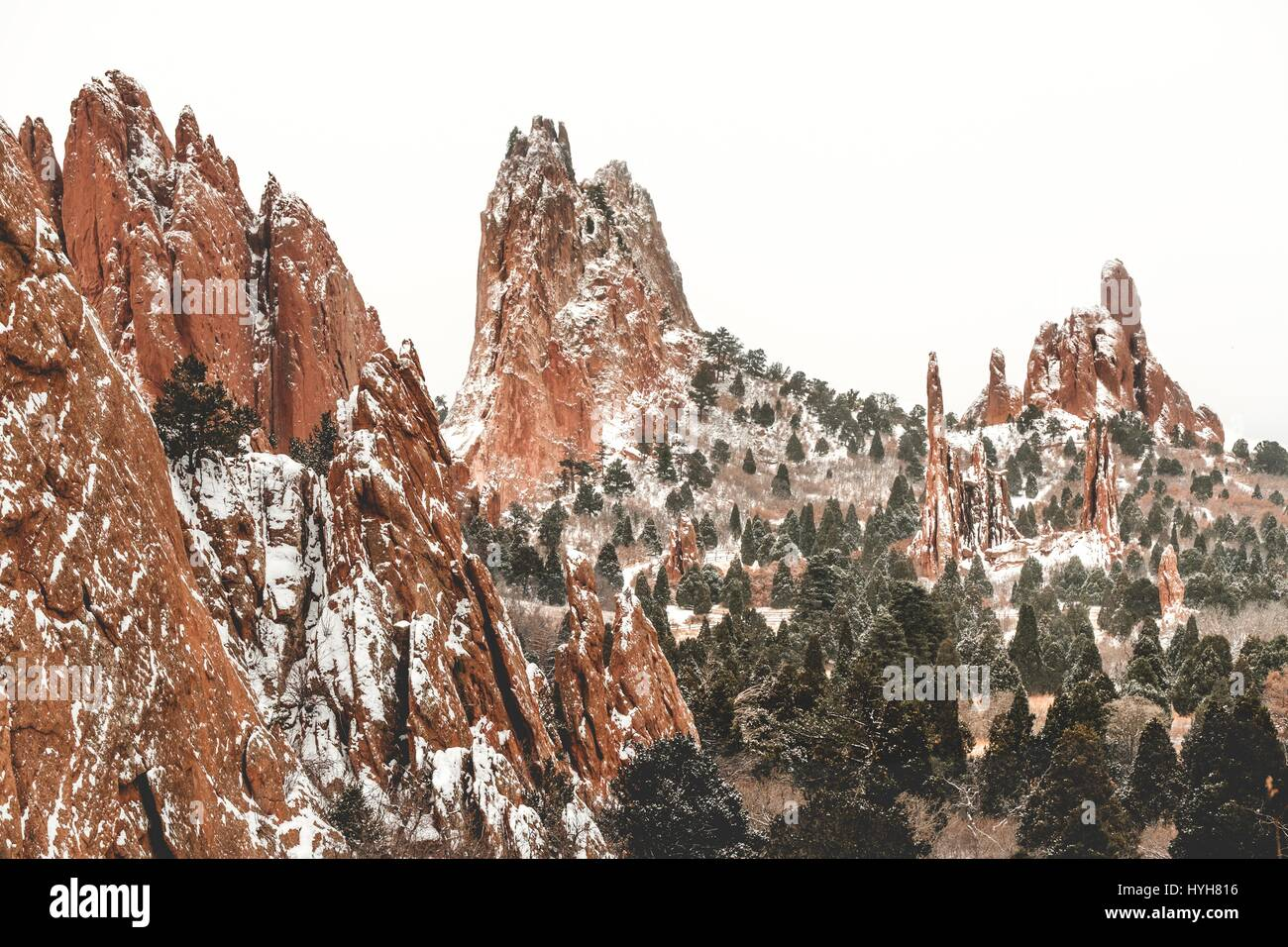 Winter Capped Trees And Peaks In Garden Of The Gods National