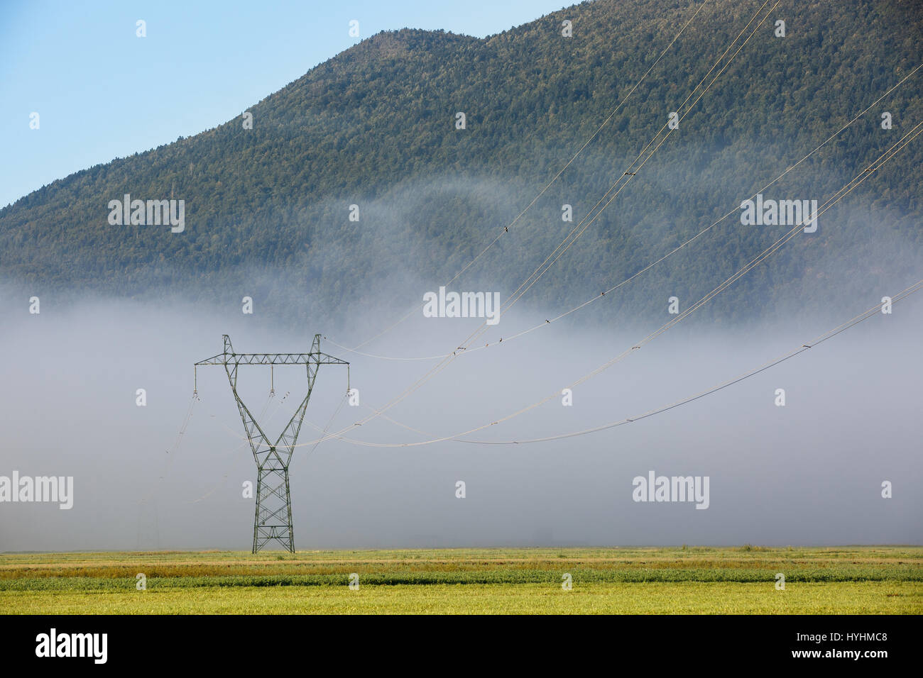 Big electricity high voltage pylon with power lines on a green grass in a foggy morning. Sustainable resources, - Stock Image