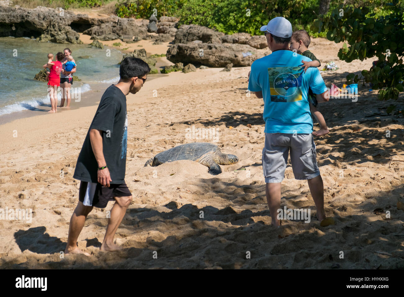 HALEIWA, OAHU, HAWAII - FEBRUARY 15, 2017: Tourists fill the beach and take pictures and selfies with cameraphones - Stock Image