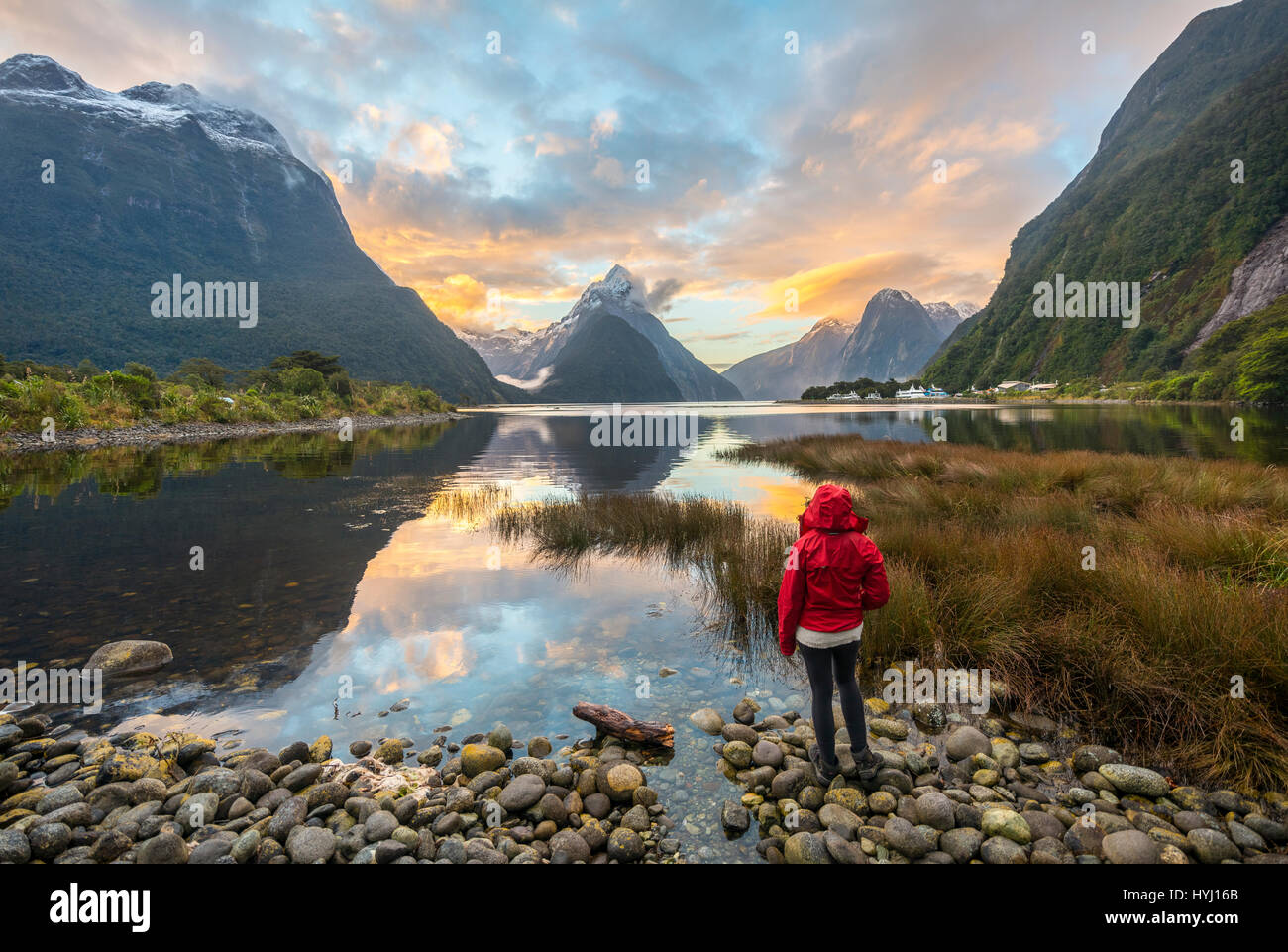 Tourist looking at the landscape, Miter Peak reflected in the water, sunset, Milford Sound, Fiordland National Park, Stock Photo