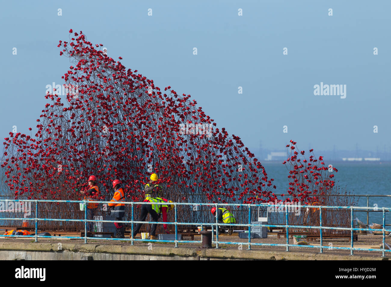 Thames Estuary, Essex, UK. 5th Apr, 2017. 14-18 Now Exhibition of Ceramic Poppies under construction on an old MoD Stock Photo