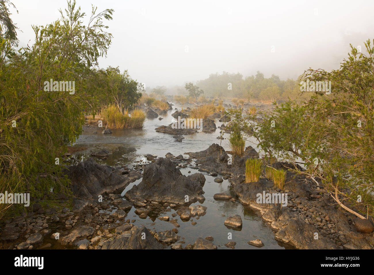 Headwaters of Clarence River with water and rocks hemmed by golden grasses and trees  on misty morning at Coombadja, - Stock Image