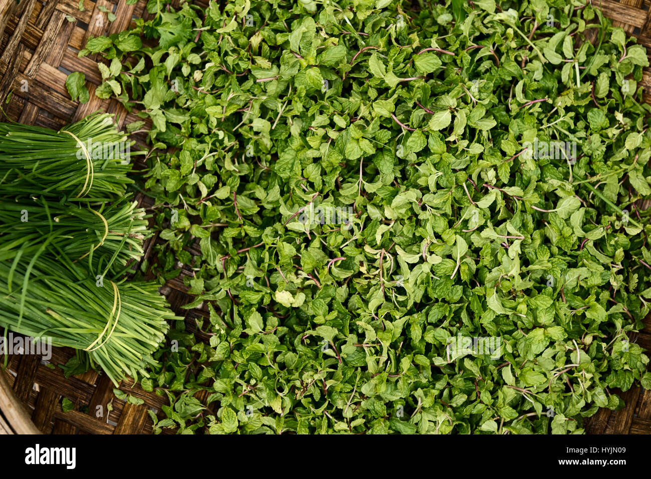 Basket of Thai basil or Vietnamese basil and chives - Stock Image