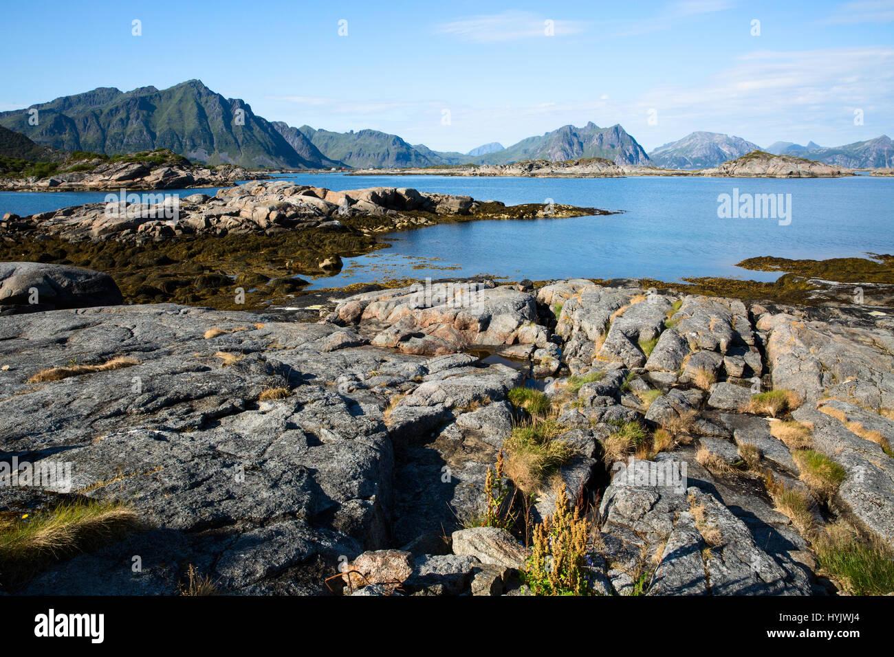 Europe,Norway,Lofoten,Vestvagoy,landscapes - Stock Image