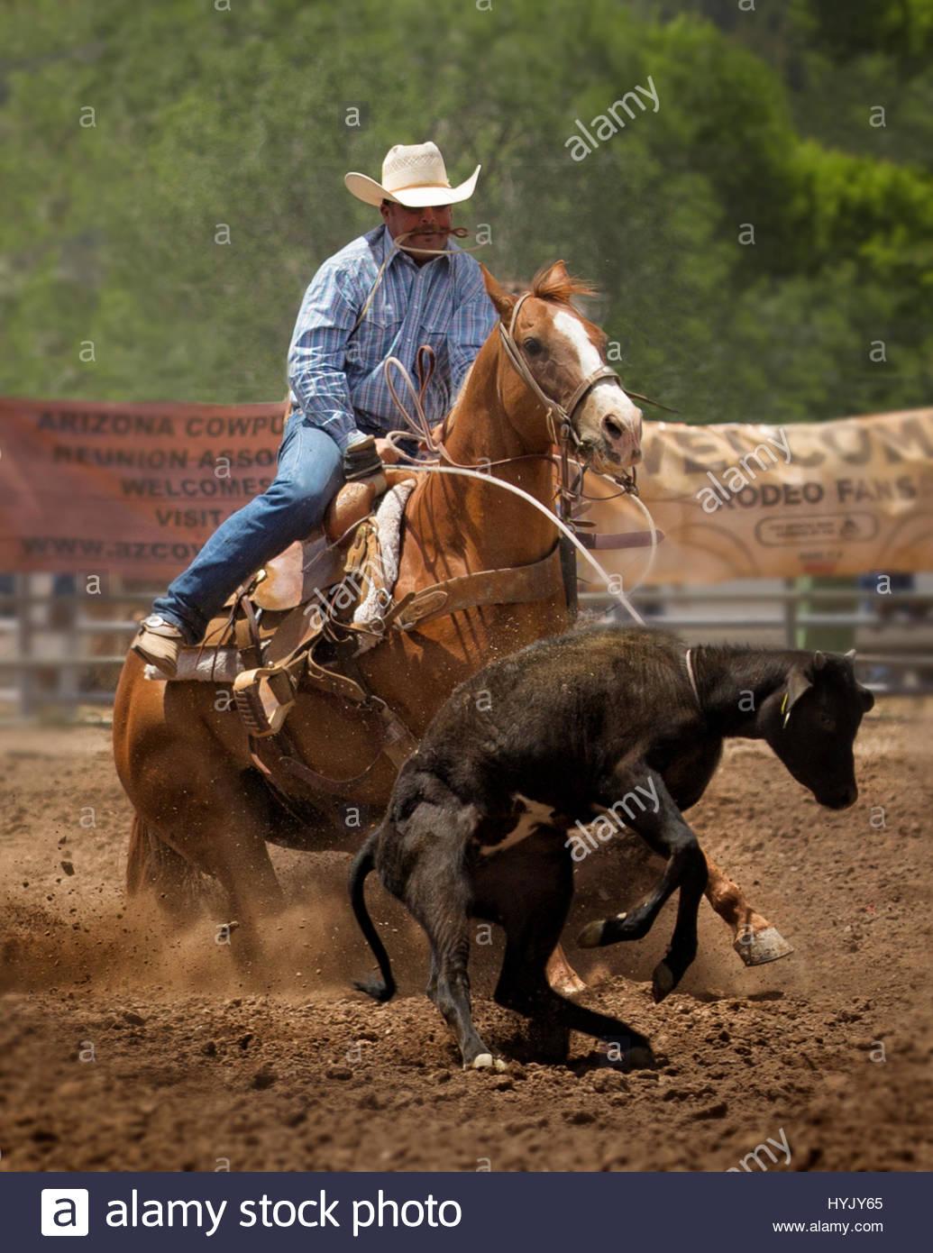 Arizona Cowboy Rodeo Stock Photos Amp Arizona Cowboy Rodeo
