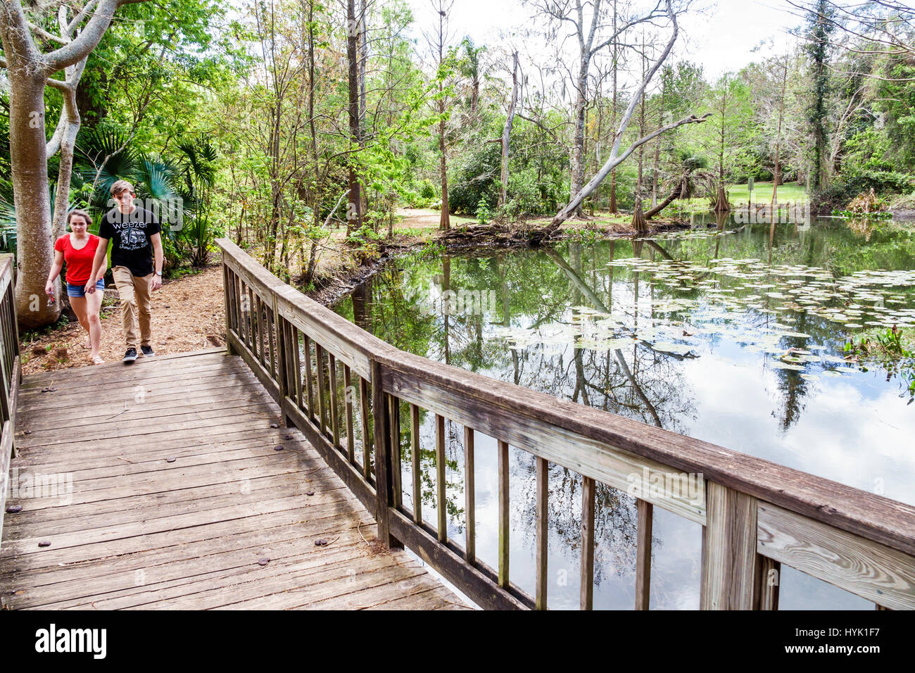 Winter Park Orlando Florida Mead Botanical Garden Alice 39 S Pond Nature Stock Photo 137486587 Alamy