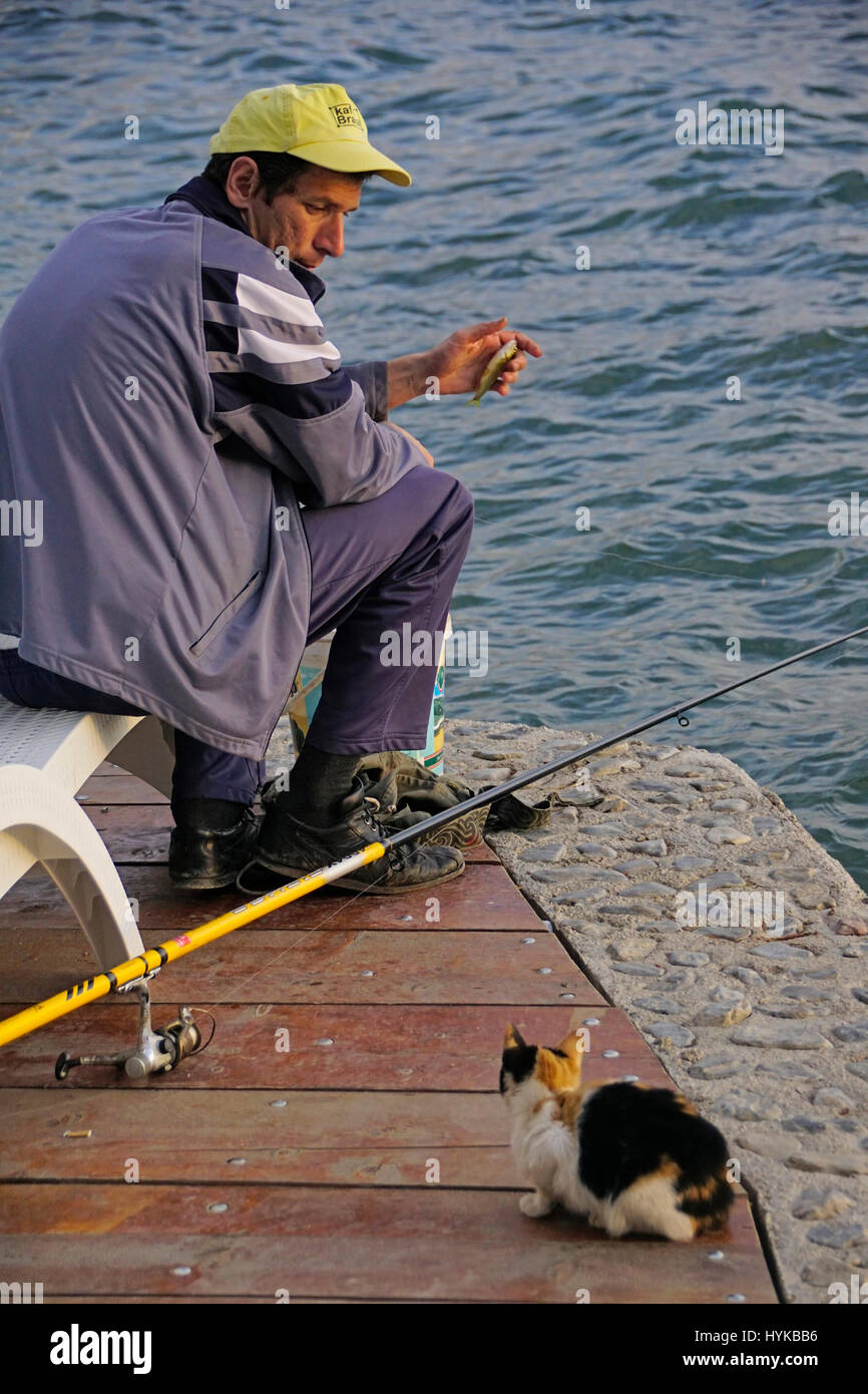 Fisherman with treat for cat on dock of Lake Ohrid, Macedonia. - Stock Image