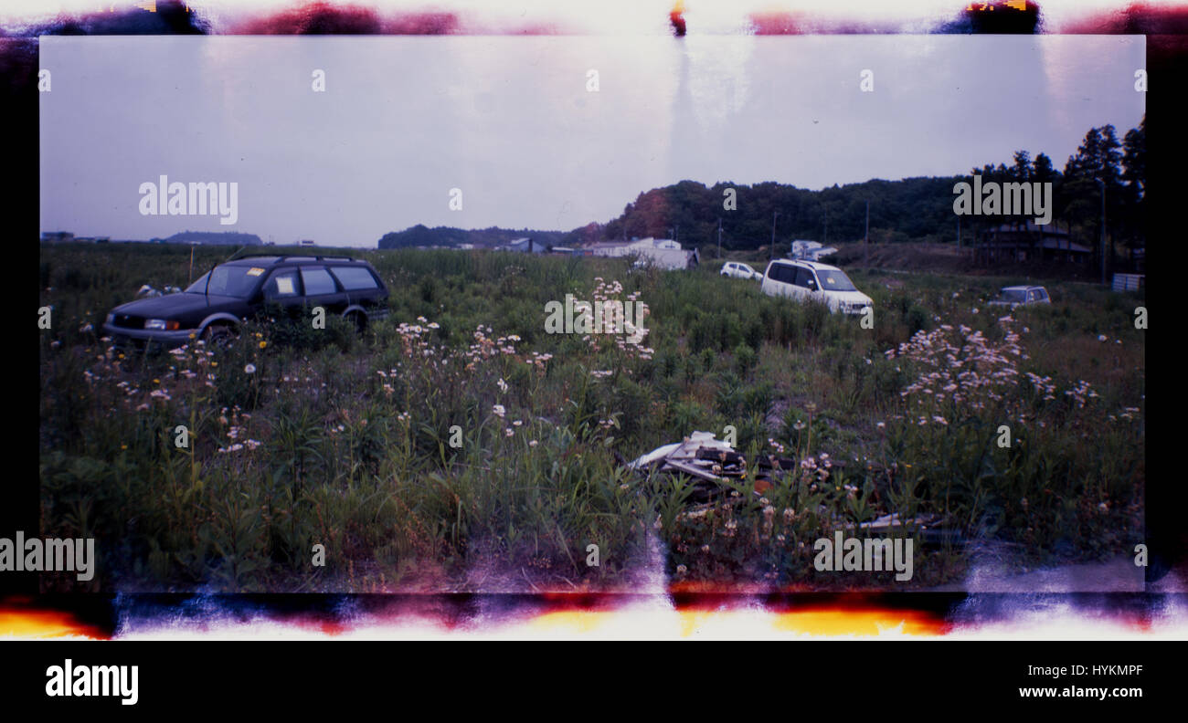 OTAMA VILLAGE, FUKUSHIMA: Abandoned cars in a field following the 2011 Tsunami. ONE FAMILY'S five-year struggle - Stock Image