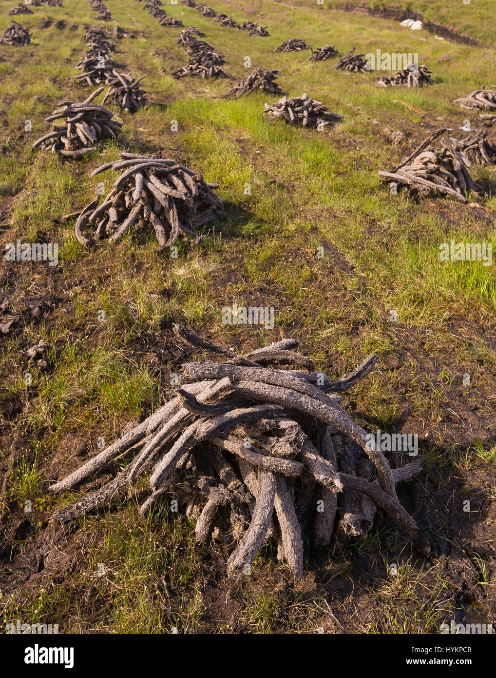 DONEGAL, IRELAND - Peat harvest for fuel,  in peatland bog. - Stock Image