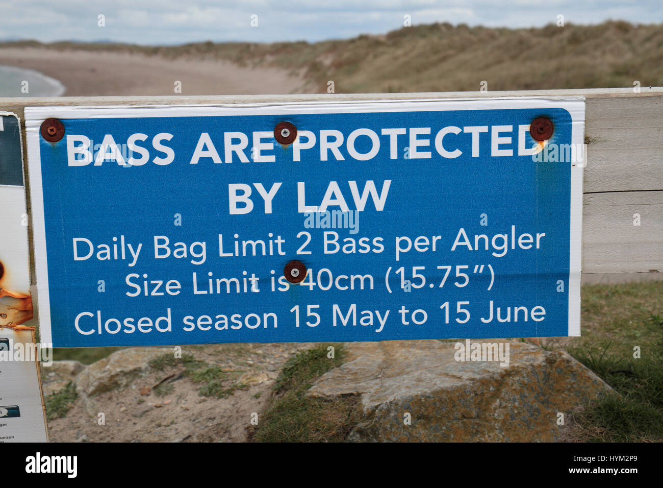 A Bass fishing sign in Kilmore Quay, County Wexford, Ireland (Eire). - Stock Image
