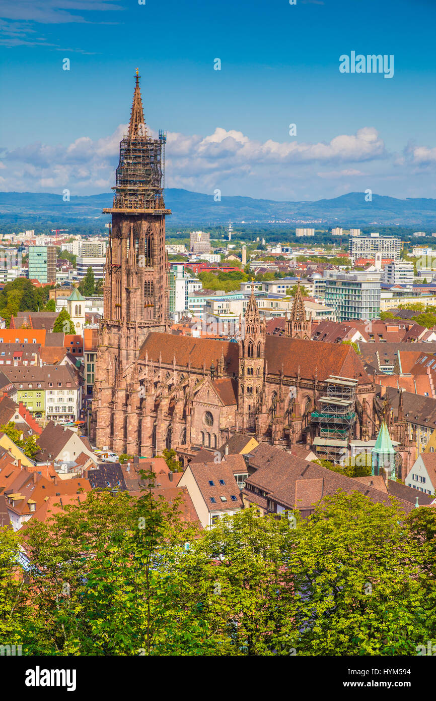 Historic town of Freiburg im Breisgau with famous Freiburg Minster cathedral in beautiful morning light, state of - Stock Image