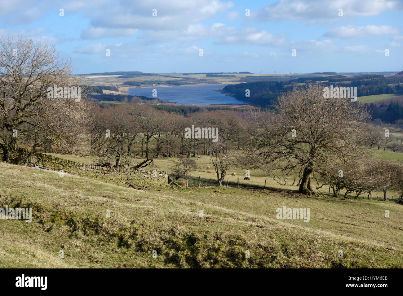 Derwent Reservoir from the B6306 on the approach to Blanchland Stock Photo