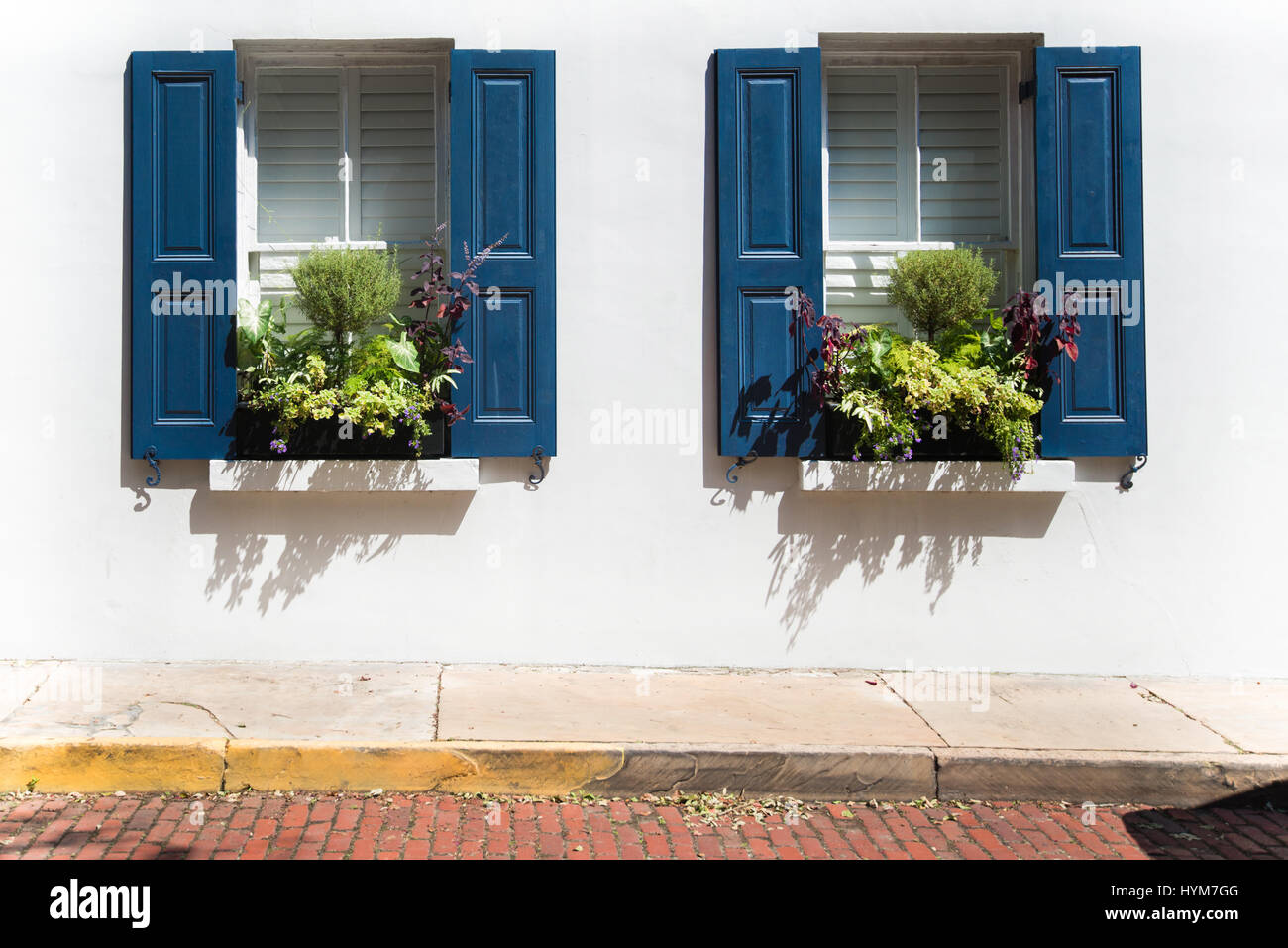 Two colorful windows with planted window boxes on the streets of Charleston, South Carolina. Stock Photo