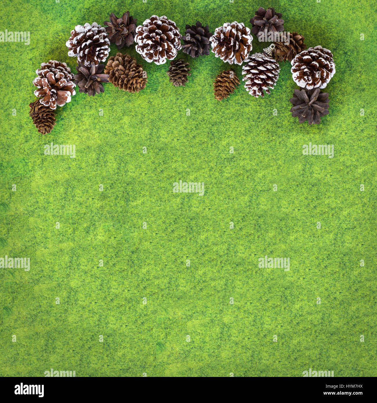 Pine and Fir cones on vibrant green felt gradient background. Square Christmas greetings card background - Stock Image