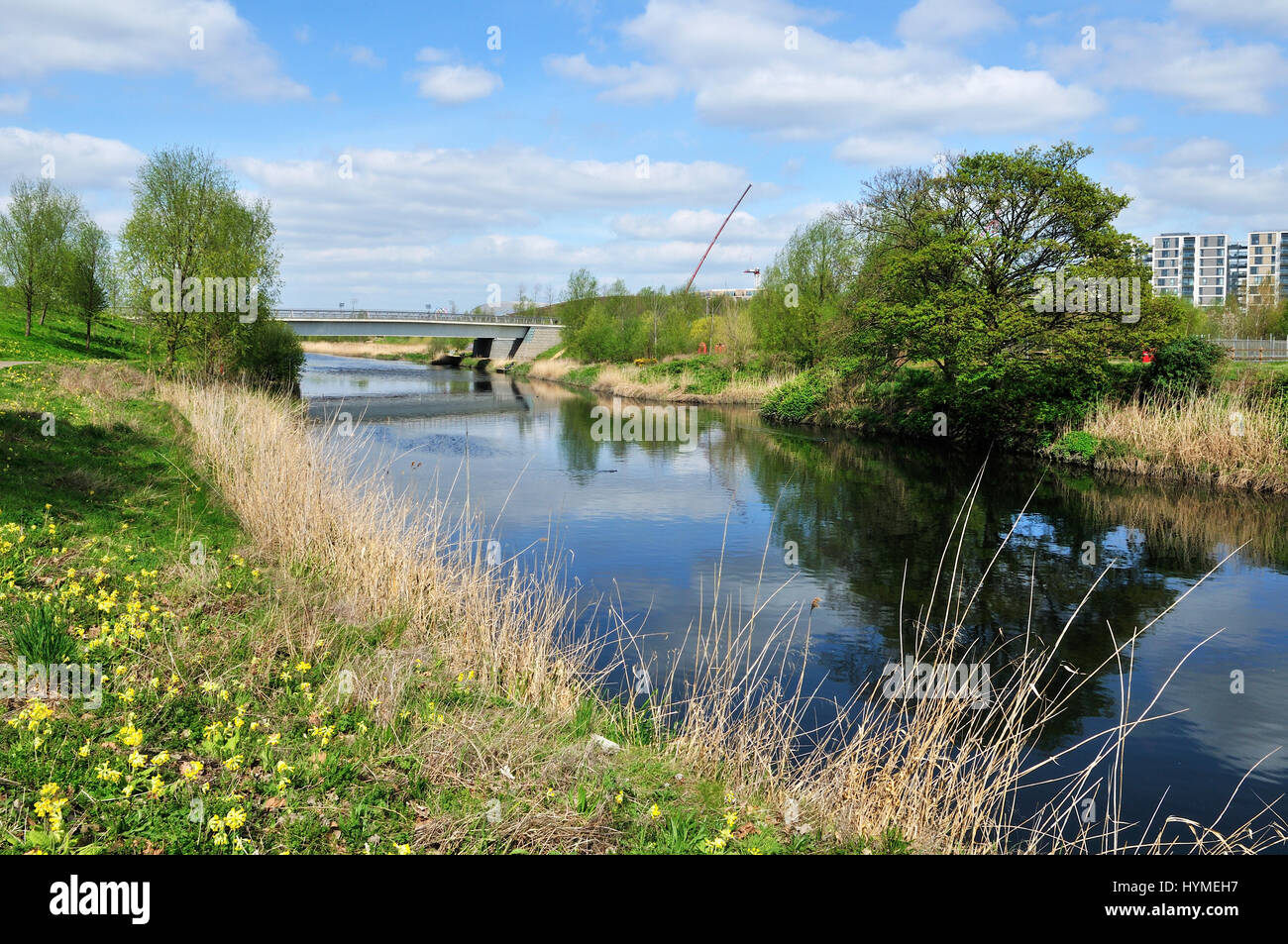 River Lea at the Queen Elizabeth Olympic Park, Stratford, East London UK - Stock Image