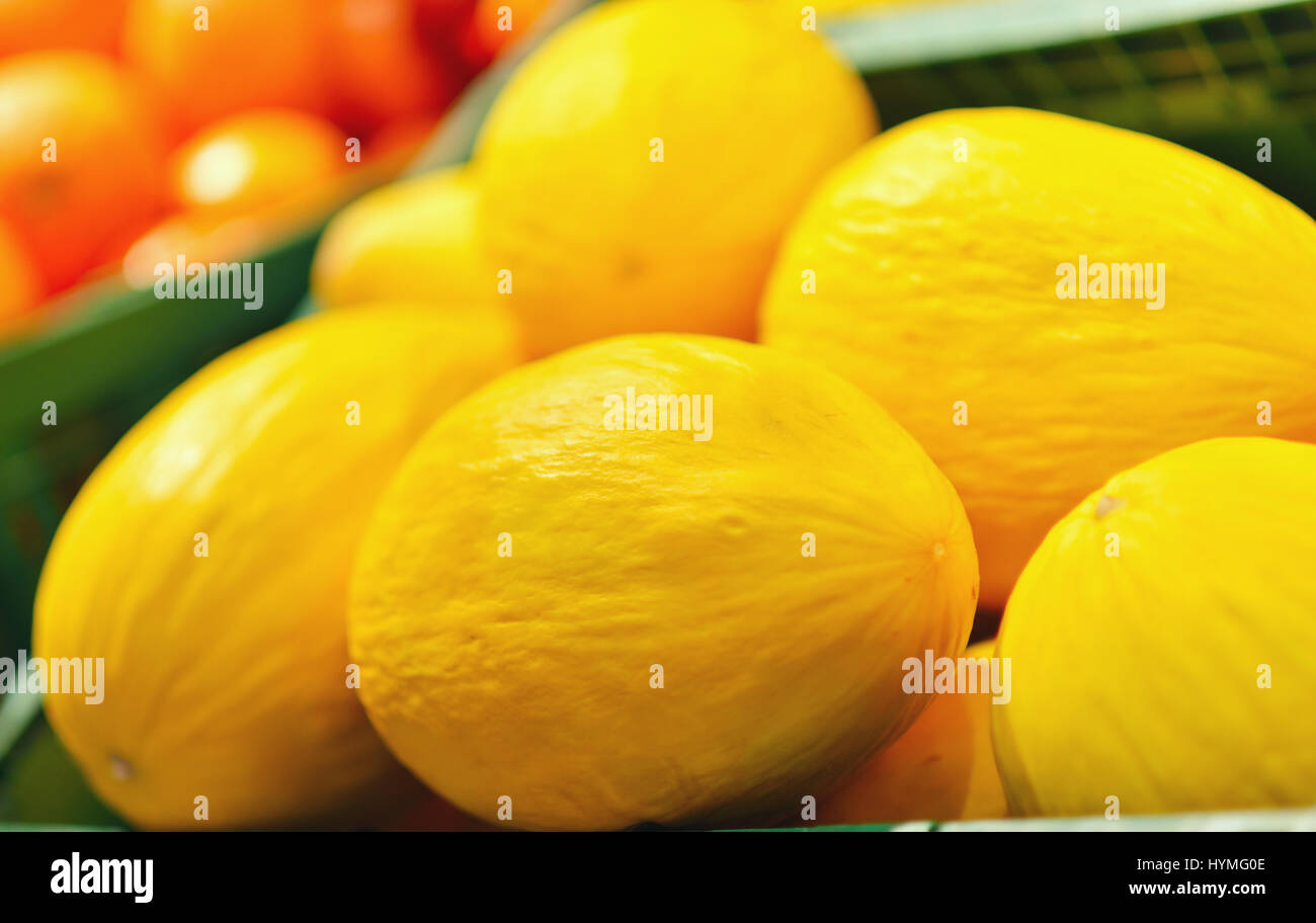 Fresh yellow melons displayed in a greengrocery - Stock Image