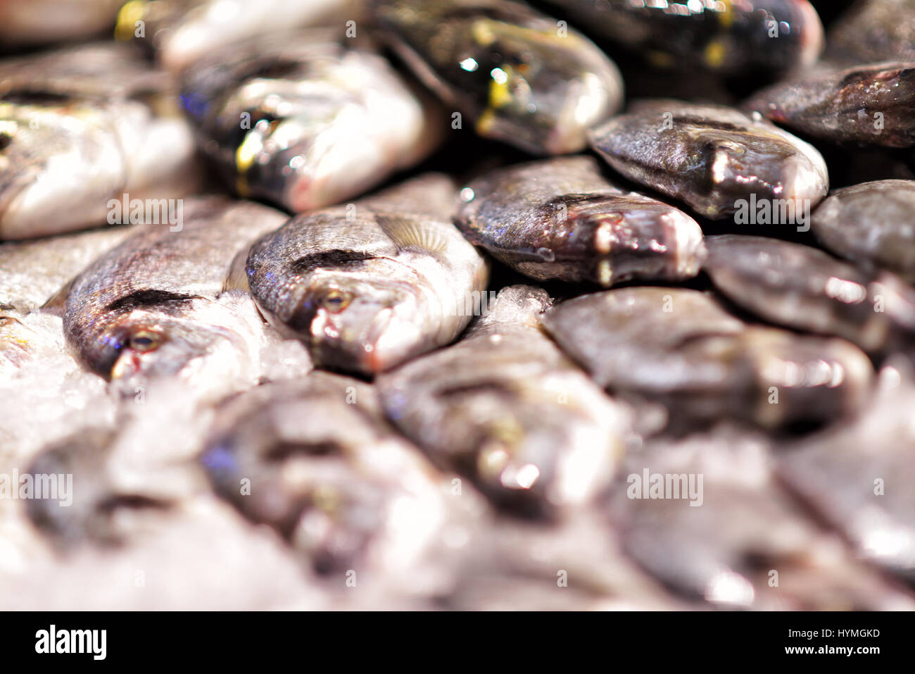 Seafood on ice at the fish market Stock Photo