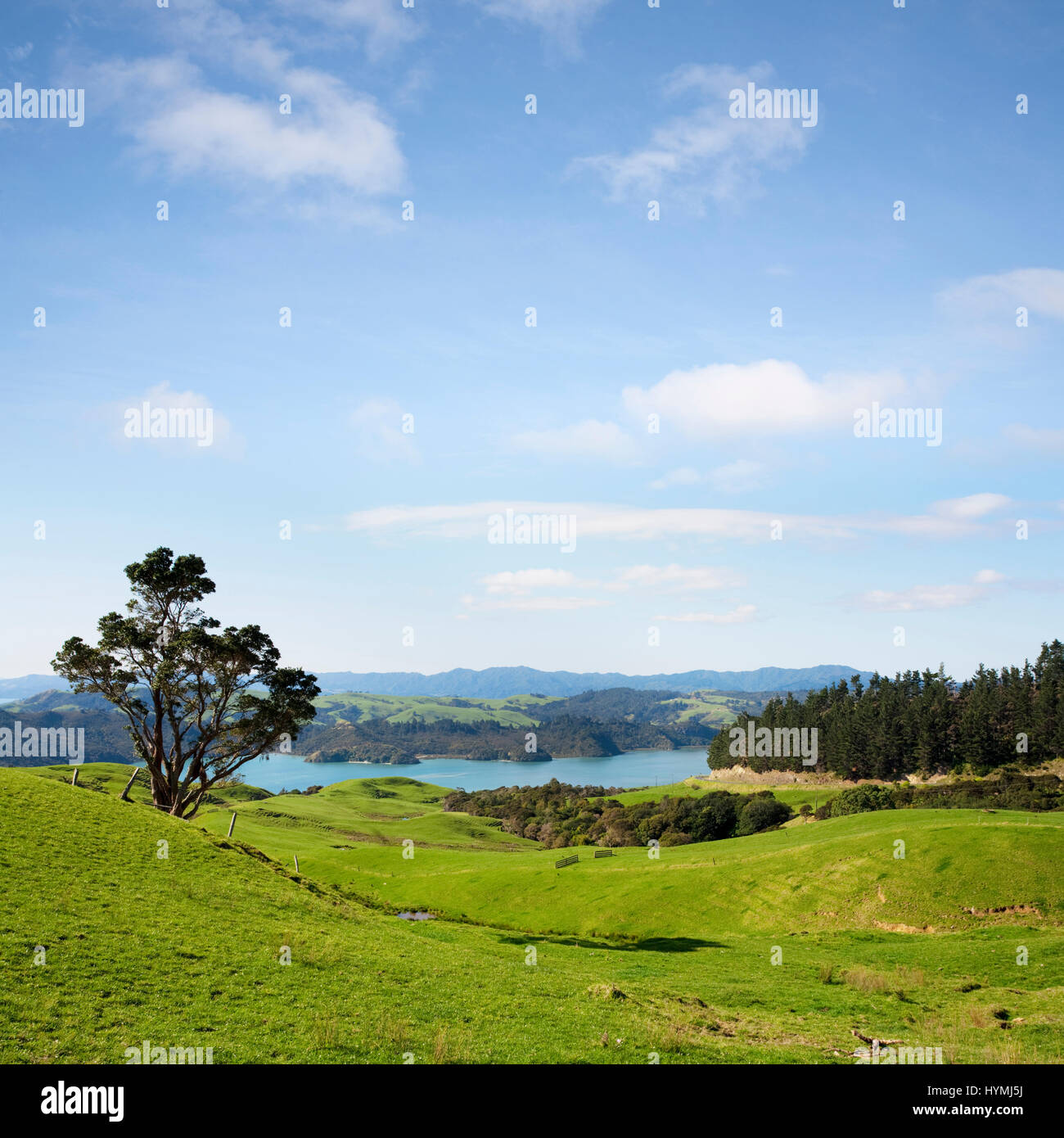 A view over the Coromandel Peninsula in the North Island of New Zealand. - Stock Image