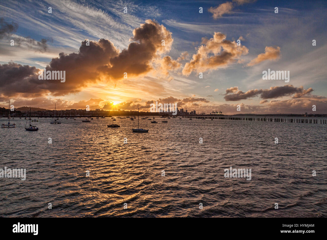 Auckland from Okahu Bay, New Zealand, at sunset. - Stock Image