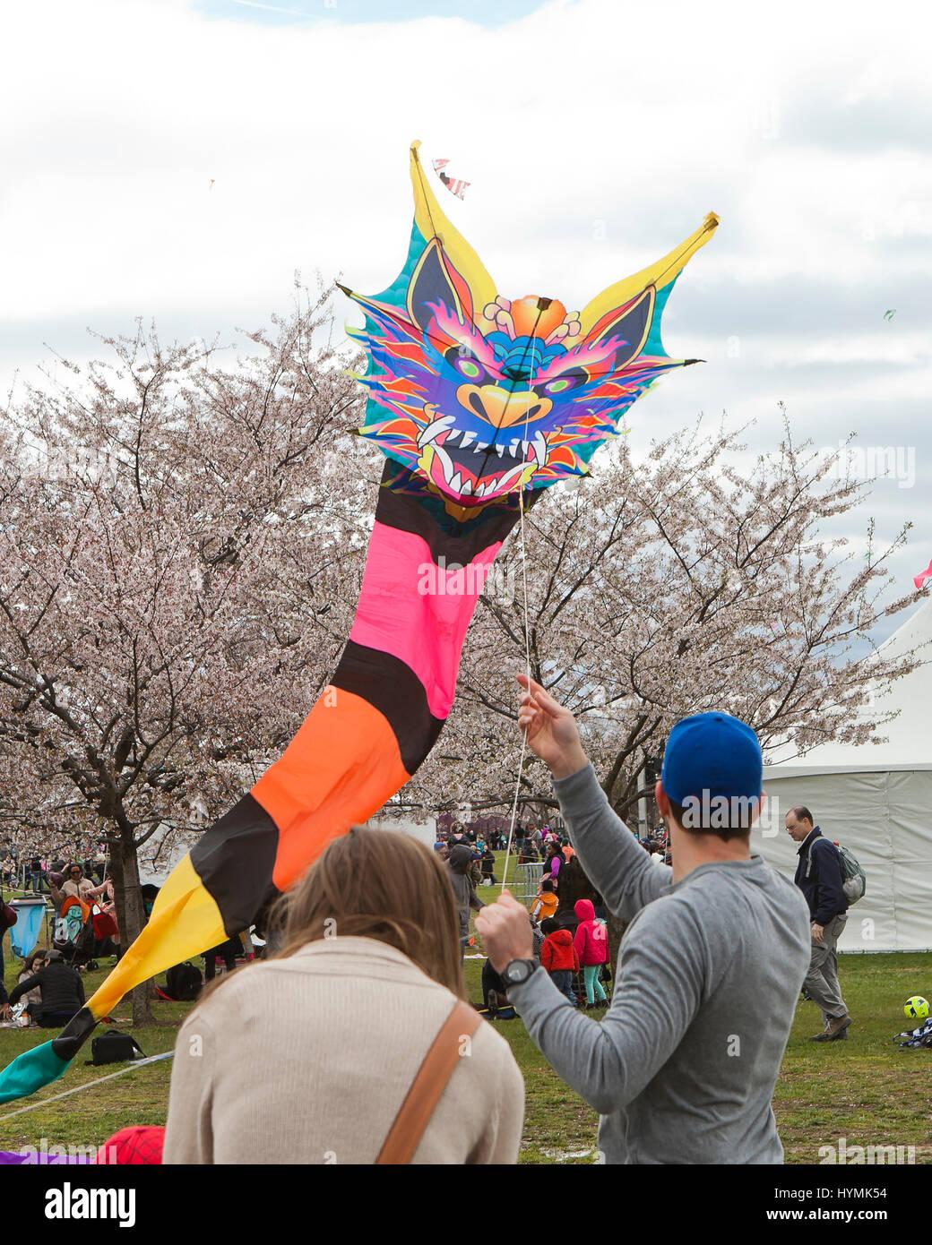 People flying kites on the National Mall during 2017 National Kite festival - Washington, DC USA - Stock Image