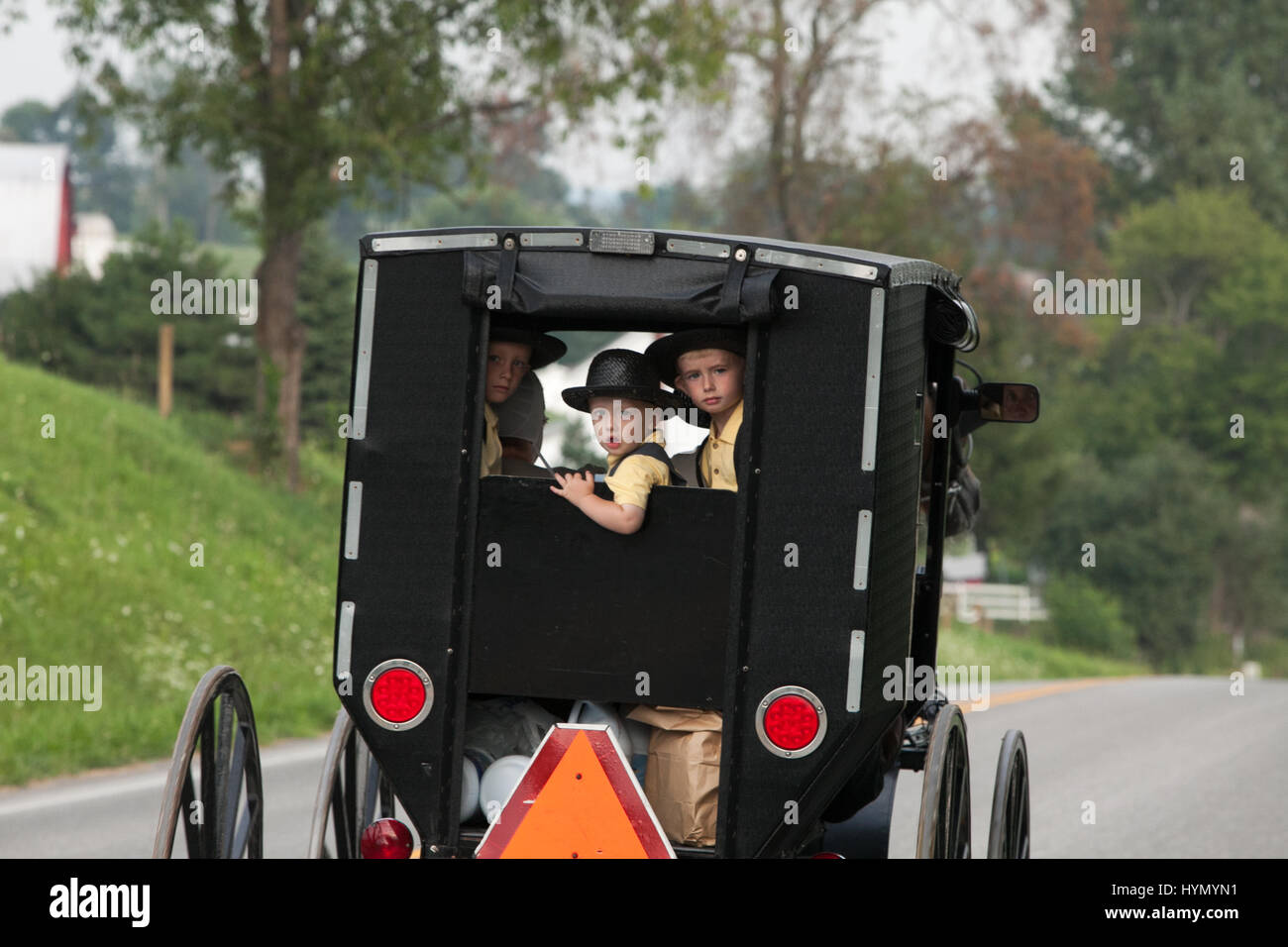 Three young Amish boys stare out the rear window of a horse-drawn buggy. - Stock Image