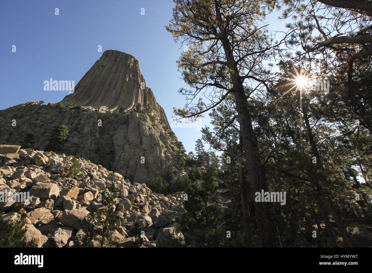 The sun shines through trees next to Devils Tower National Monument, an igneous rock formation. - Stock Image