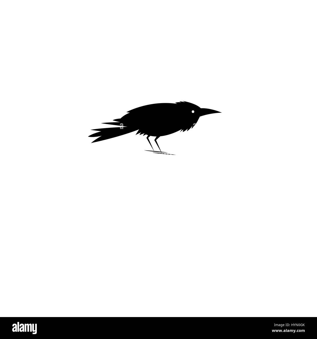 Beautiful Symbol Of The Black Raven On A White Background Stock
