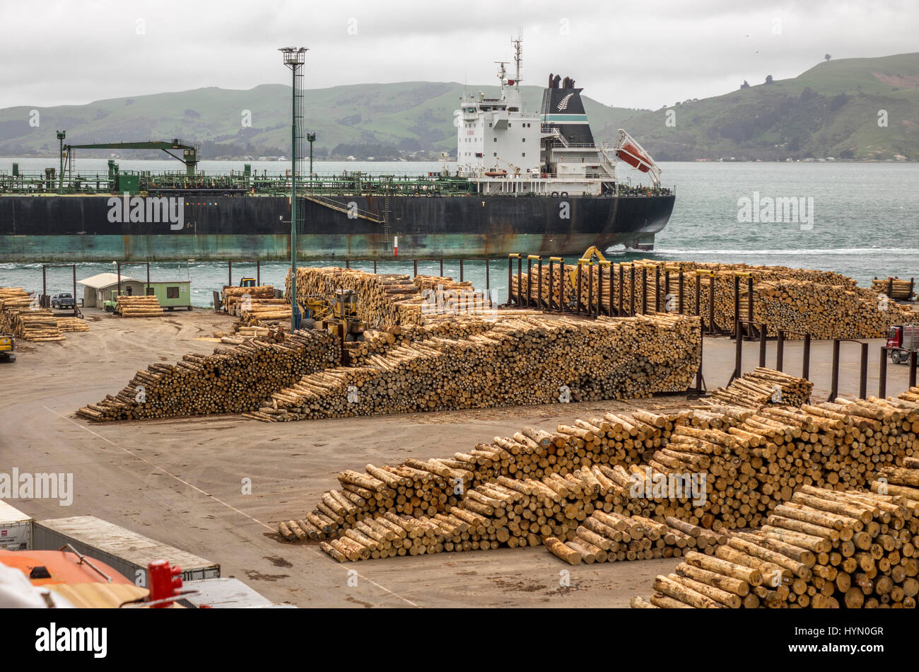 Sawlogs Stacked Ready For Shipping At Port Chalmers Near Dunedin New Zealand, Forest Product Exports - Stock Image
