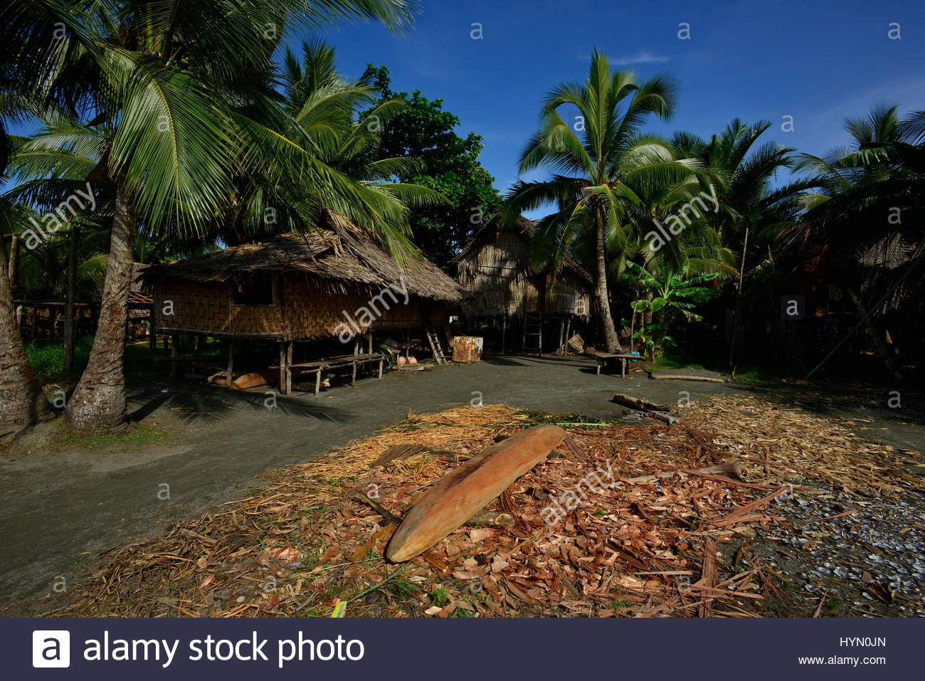 A canoe carved out of wood and a hut surrounded by palm trees. - Stock Image