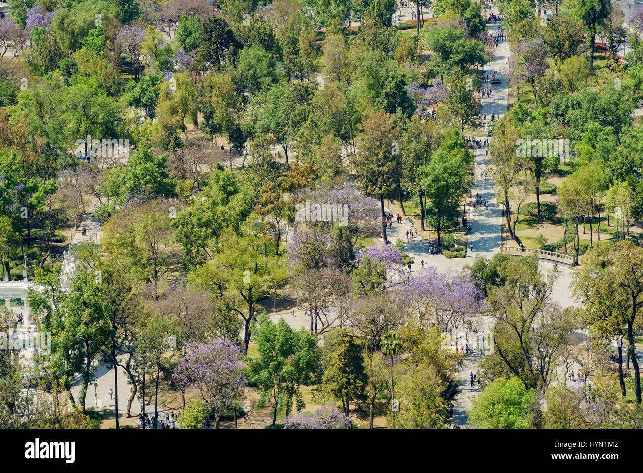 Aerial view of Central Alameda Park from Mirador Torre Latino - Stock Image