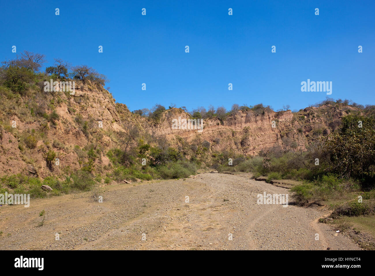 a dry river bed with orange sandy cliffs in the nature reserve of morni hills near chandigarh india under a blue Stock Photo