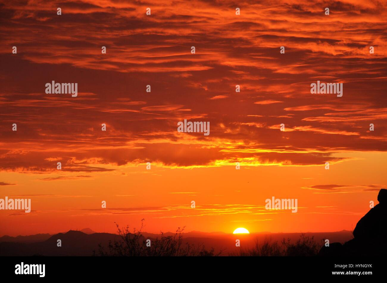 Beautiful Desert Scenes Shot in Arizona at Sunset Stock Photo