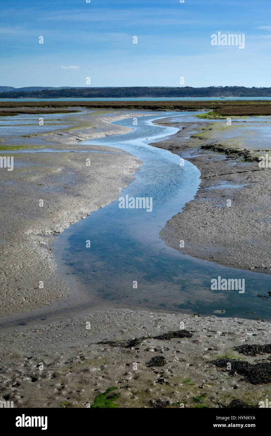 A scenic water channel in the mudflats at Keyhaven Harbour with the tide out, leading to the Solent and Isle of - Stock Image