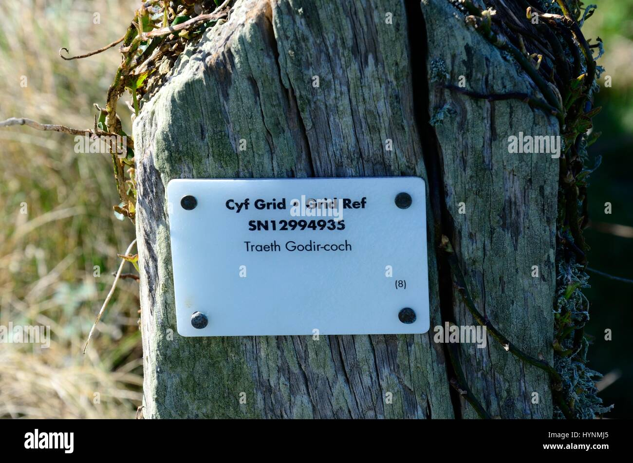 Grid reference ref sign on an old post for walkers Traeth Godir-coch beach Cemaes Head Pembrokeshire  Wales cymru - Stock Image