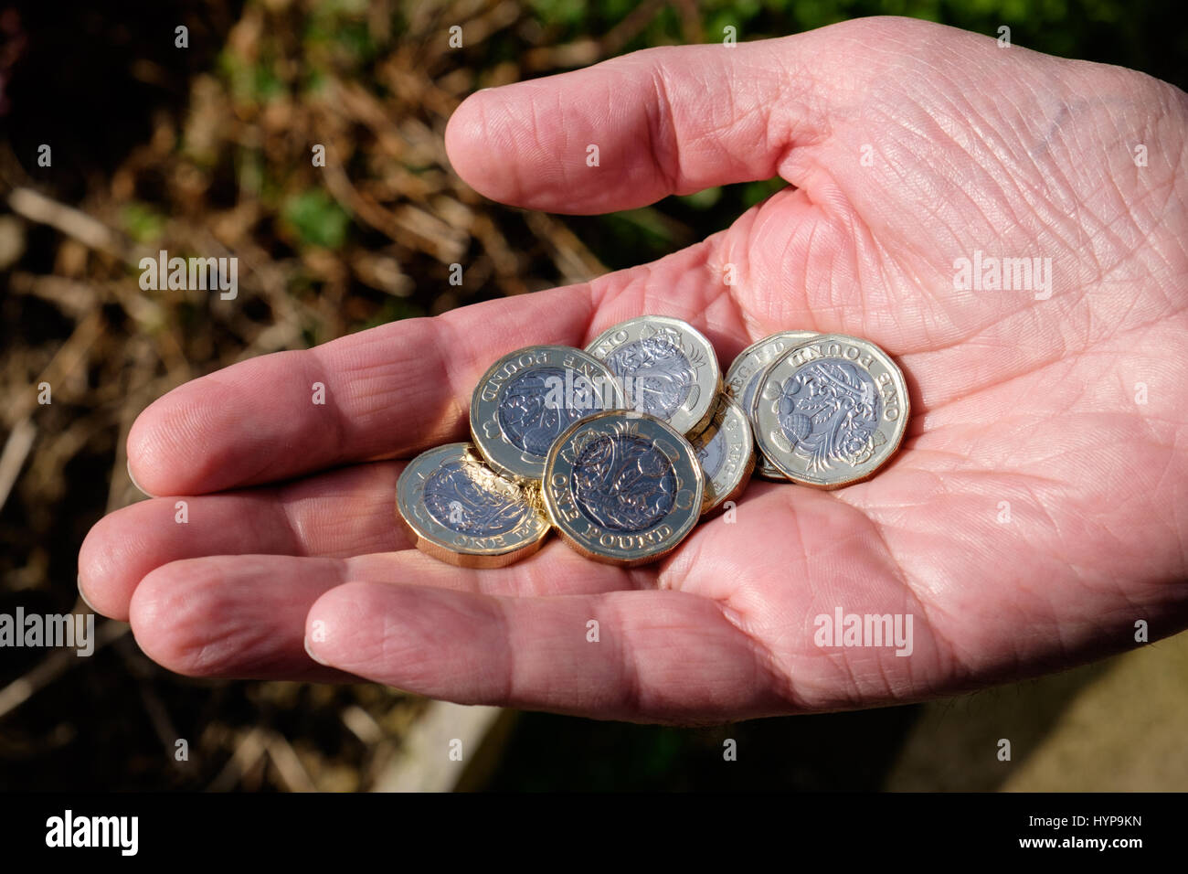 Pound coins in hand - Stock Image
